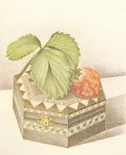 五月の小箱